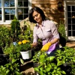 How to Maintain an Eco Friendly Garden
