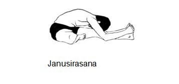Janusirasana